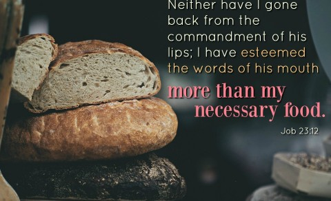God's Word is Very Important